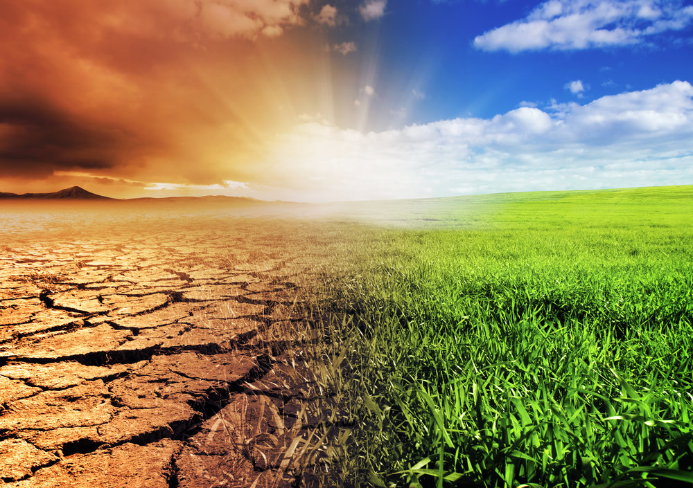 Global Warming Is a Global Issue We All Should Resolve