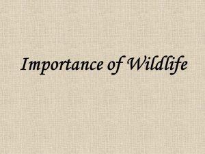 How Important is Wildlife